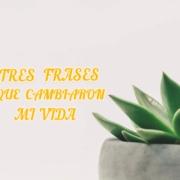 TRES FRASES QUE CAMBIARON MI VIDA